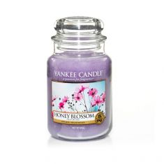 Yankee | Honey Blossom Candle