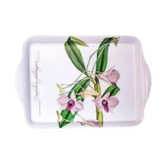 Ashdene  | Cooktown Orchid |  Scatter Tray